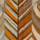 Feuilles d'automne: detail