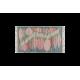 Foglie di primavera pair: carpet art. 1122